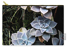 Succulents Graptopetalum Paraguayense     Carry-all Pouch by Catherine Lau