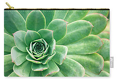 Succulents II Carry-all Pouch