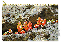 Succulents On The Oregon Coast Carry-all Pouch