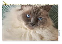Sugar My Ragdoll Cat Carry-all Pouch