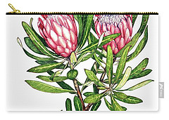 Sugarbush And The Humming Bird Carry-all Pouch by Heidi Kriel