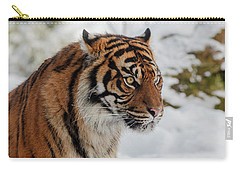 Sumatran Tiger In The Snow Carry-all Pouch