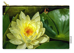 Carry-all Pouch featuring the photograph Summer Gold 2 by Ken Frischkorn
