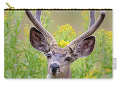 Summer Mule Deer Carry-all Pouch by Jack Bell