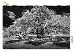 Carry-all Pouch featuring the photograph A Summer's Night by Darryl Dalton