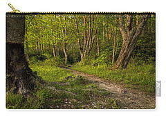 Price Lake Trail - Blue Ridge Parkway Carry-all Pouch