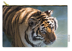 Carry-all Pouch featuring the photograph Summertime Wading by Colleen Coccia