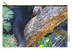 Sun  Bear - Afternoon Nap Carry-all Pouch by Laurel Talabere