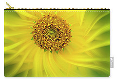 Sun Dance Carry-all Pouch