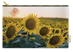 Sun Flowers IIi Carry-all Pouch