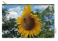 Sun Power Carry-all Pouch by Angela J Wright