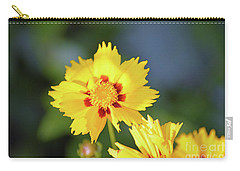 Sun Worshipper  Carry-all Pouch