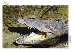 Carry-all Pouch featuring the photograph Sunbathing Croc by Francesca Mackenney