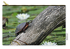 Carry-all Pouch featuring the photograph Turtle Sunbathing by Glenn Gordon