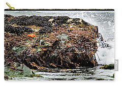Carry-all Pouch featuring the photograph Sunbathing Starfish by Penny Lisowski