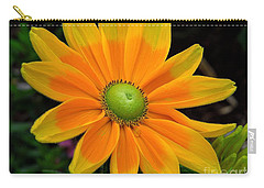 Sunburst Carry-all Pouch