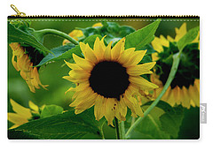 Carry-all Pouch featuring the photograph Sunflower 2017 5 by Buddy Scott