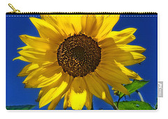 Maize 'n Blue Carry-all Pouch