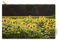 Carry-all Pouch featuring the photograph  Sunflowers 5 by Andrea Anderegg