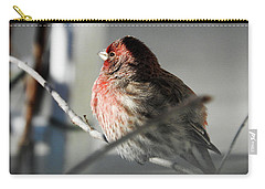 Sunlight On My Feathers Carry-all Pouch by Janice Adomeit