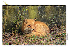 Sunning Fox Carry-all Pouch