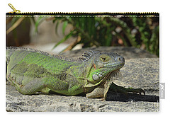 Sunning Green Iguana On A Rock Ledge Carry-all Pouch by DejaVu Designs