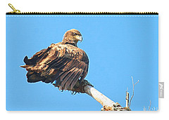 Carry-all Pouch featuring the photograph Sunning Out On A Limb by Debbie Stahre