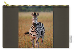 Sunset Zebra Carry-all Pouch