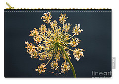 Sunset's Glow Carry-all Pouch by Rebecca Davis