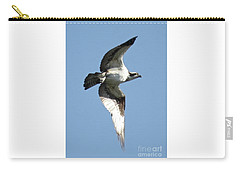 Sunshine Osprey Carry-all Pouch by Carol Groenen