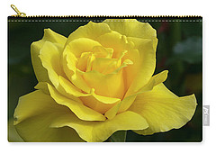 Sunsprite Rose 2 Carry-all Pouch