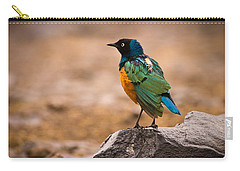 Superb Starling Carry-all Pouch by Adam Romanowicz