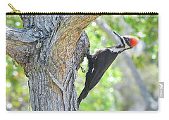 Surprised By Pileated Carry-all Pouch