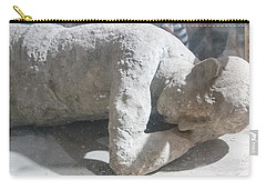 Suspended In Time Carry-all Pouch