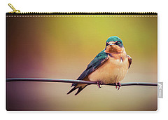Swallow Carry-all Pouch by Mary Hone