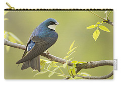 Swallow Carry-all Pouch by Mircea Costina Photography