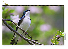 Swallow Song Carry-all Pouch by Christina Rollo
