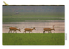 Swamp Deers Carry-all Pouch