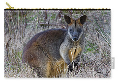 Carry-all Pouch featuring the photograph Swamp Wallaby  by Miroslava Jurcik