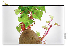 Sweet Potato Carry-all Pouch
