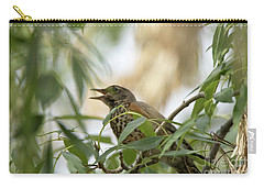 Carry-all Pouch featuring the photograph Sweet Song by Anne Rodkin