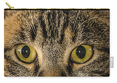 Symmetrical Cat Carry-all Pouch