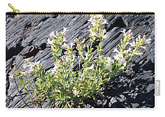 T-107709 Hot Rock Penstemon Carry-all Pouch