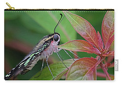 Tailed Jay Butterfly Macro Shot Carry-all Pouch