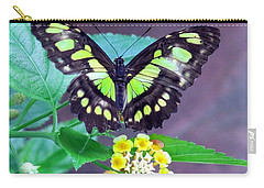 Tailed Jay Visits Lantana Carry-all Pouch