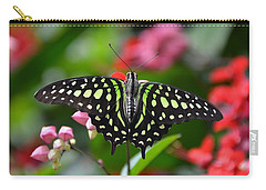 Tailed Jay4 Carry-all Pouch