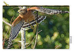 Take Off Carry-all Pouch by Don Durfee