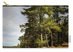 Carry-all Pouch featuring the photograph Tall Pines On Lake Shore by Elena Elisseeva