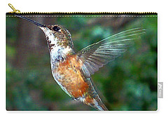 Tan Hummingbird Carry-all Pouch by Joseph Frank Baraba