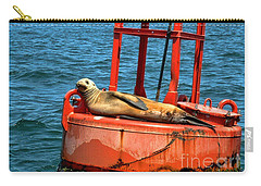 Carry-all Pouch featuring the photograph Tanning Sea Lion On Buoy by Mariola Bitner